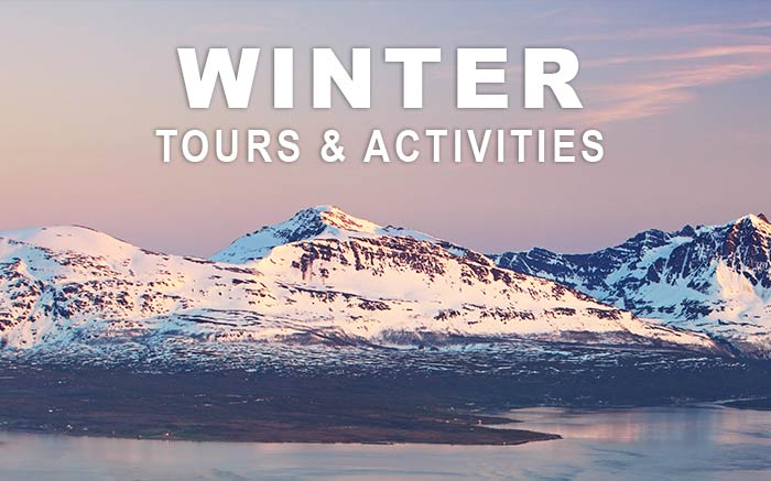Winter tours & activities